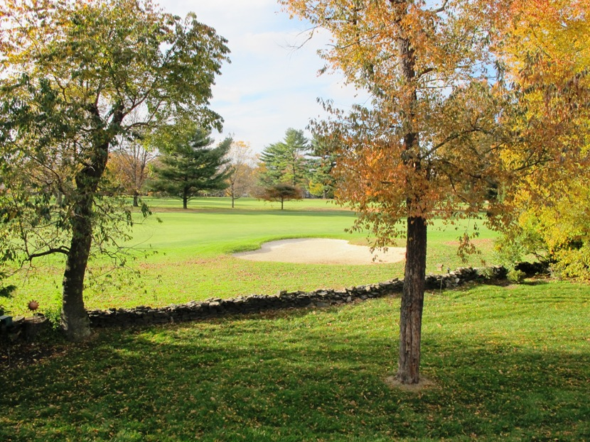Many Homes Enjoy A View Of The 7th Hole Of Springhaven Country Club's Golf Course