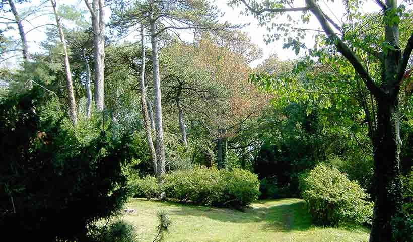 taylor-arboretum