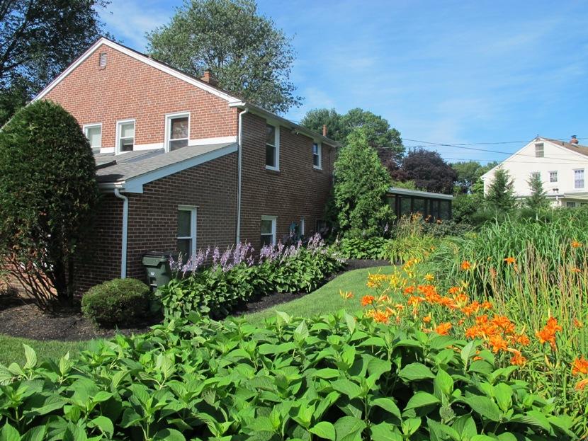 Professionally Landscaped Yard