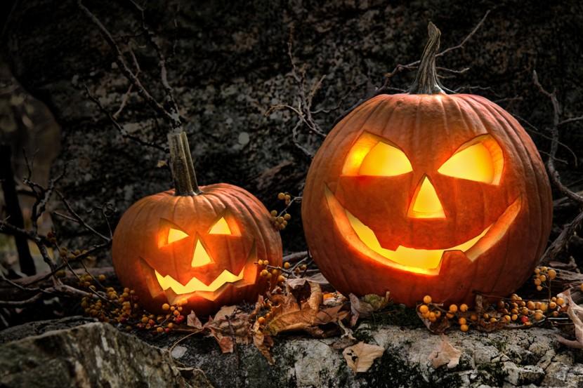 Wallingford PA Real Estate - Wallingford PA - Can Stock Pumpkin Photo