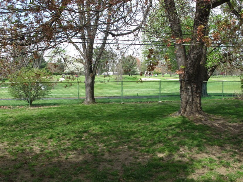Back Yard View Of Springhaven Golf Course