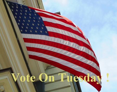 american-flag-remember-to-vote-wallingford-pa-real-estate-wallingford-pa