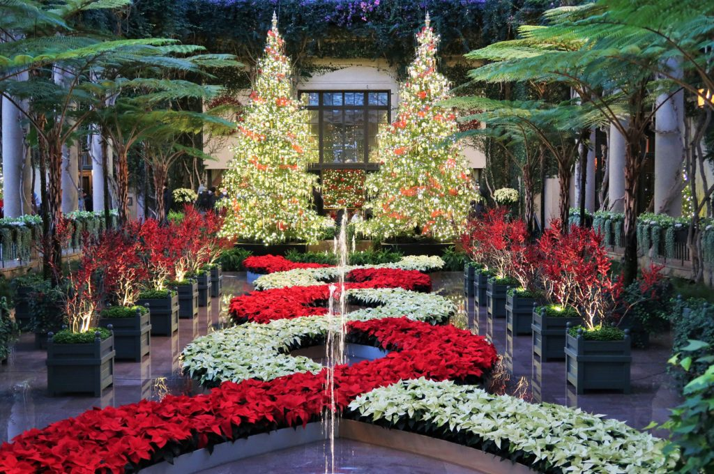 Longwood Gardens - Christmas Display 2020
